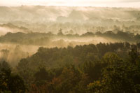 misty ridges 135mm