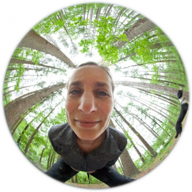 fisheye looking up